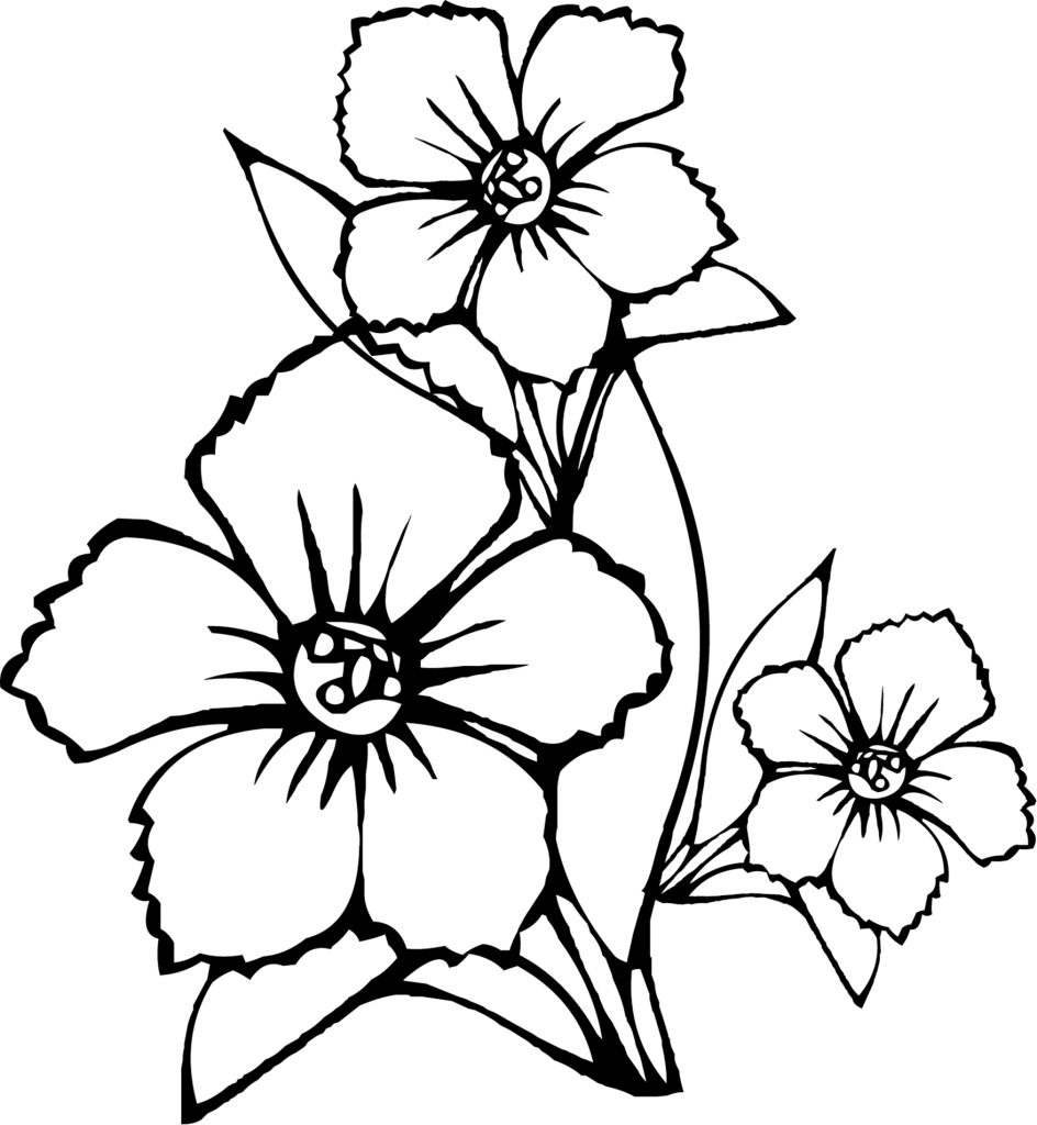 flower coloring pages color | Free Printable Flower Coloring Pages For Kids - Best ...