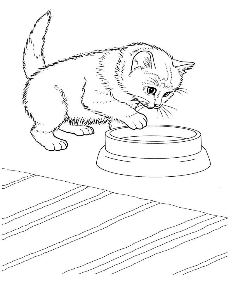 Free Printable Kitten Coloring